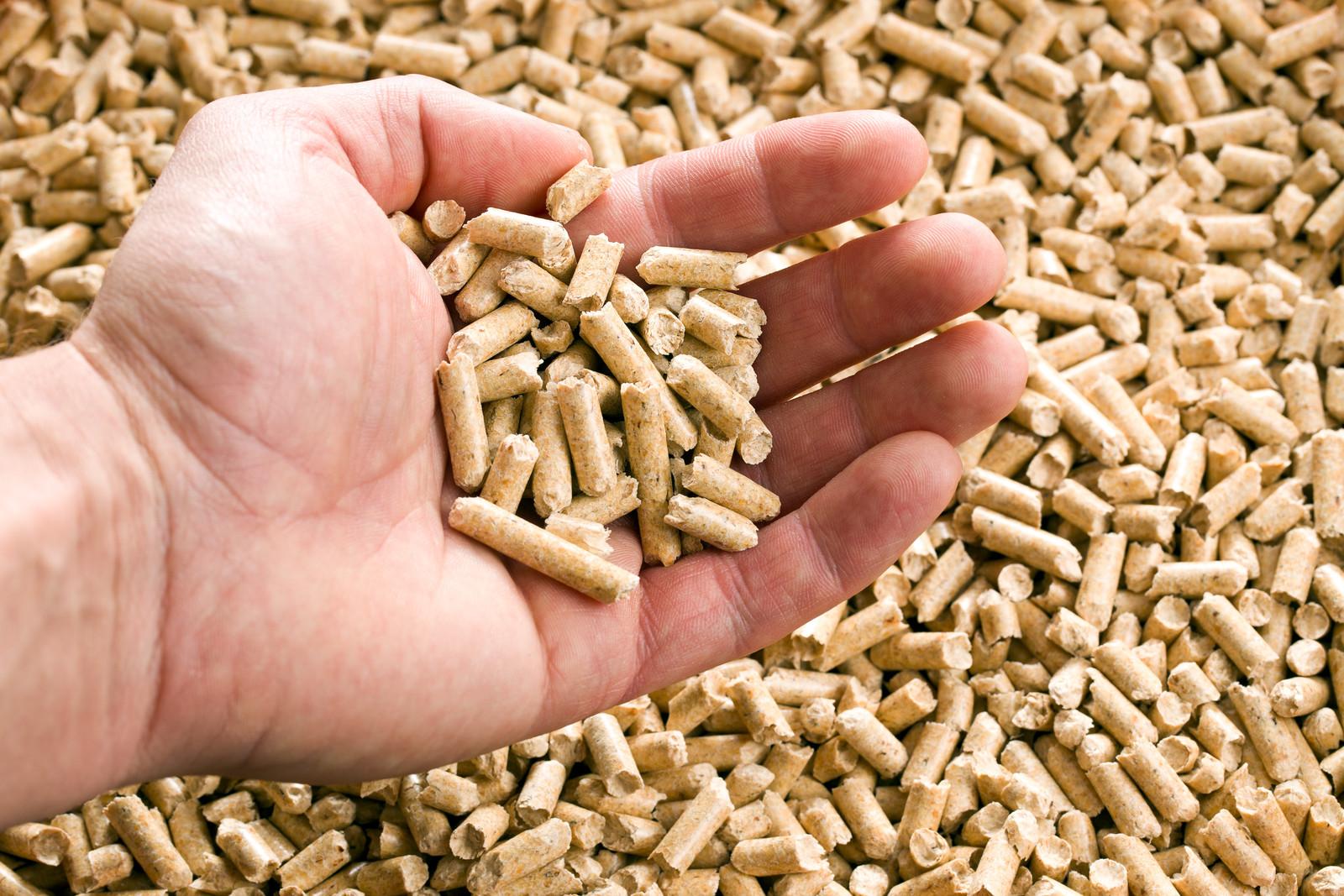 Todopalets: Nueva sección de venta de pellets y estufas